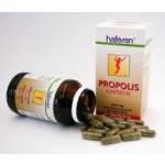 Hafesan Propolis 400 mg Kapseln